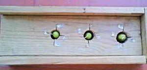 rayador aceitunas artesanal gorda-mediana-pequeña