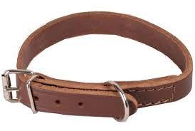 collar cuero 45x2.5cm